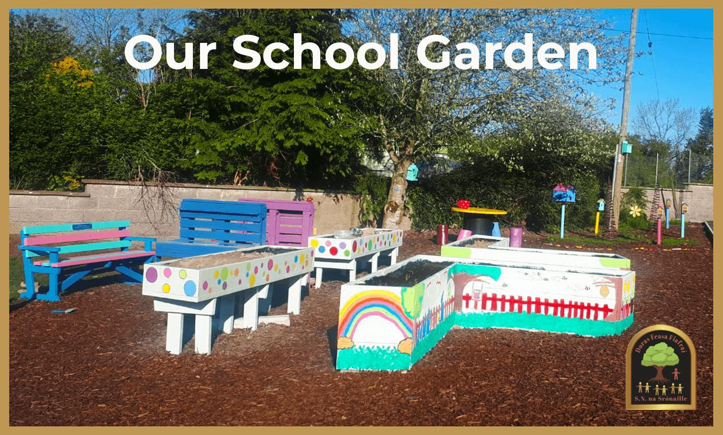 shronell national school school garden